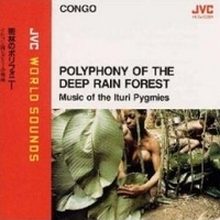 Polyphony Of The Deep Rain Forest